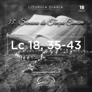 33ª Semana do Tempo Comum - Segunda-feira- 18/11/2019(Lc 18,35-43)