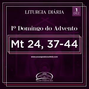 1º Domingo do Advento- 01/12/2019 (Mt 24,37-44)