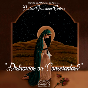 Distraídos ou conscientes?- Homilia do 1º Domingo do Advento- Pe Graciano