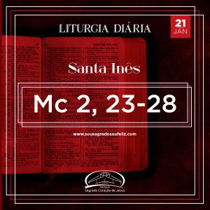 2ª Semana do Tempo Comum - Terça-feira- 21/01/2020 (Mc 2,23-28)