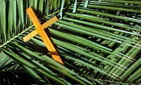 Domingo de Ramos- Humanizar nossa Jerusalém através do diálogo amoroso